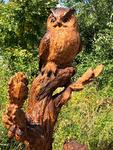 Kakk / Owl 46