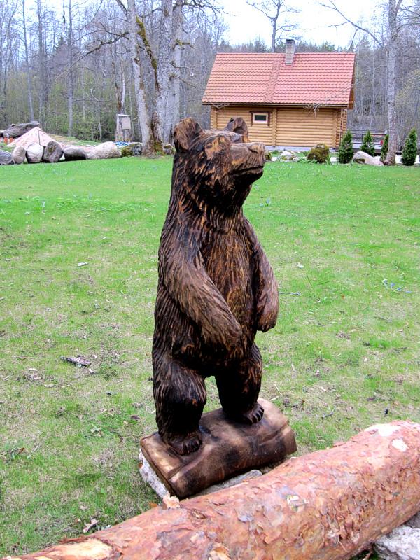 Karu / Bear 16