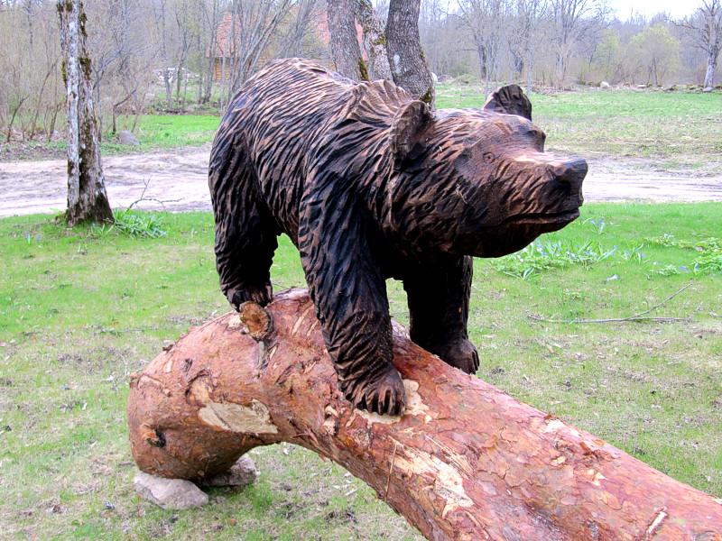 Karu / Bear 17
