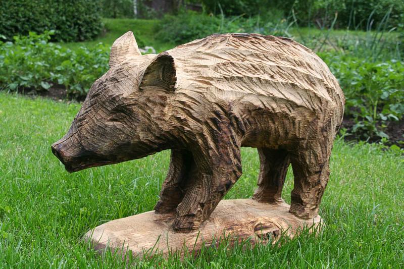 Metssiga / Wild boar 21