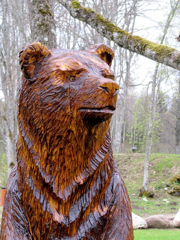 Karu / Bear 25