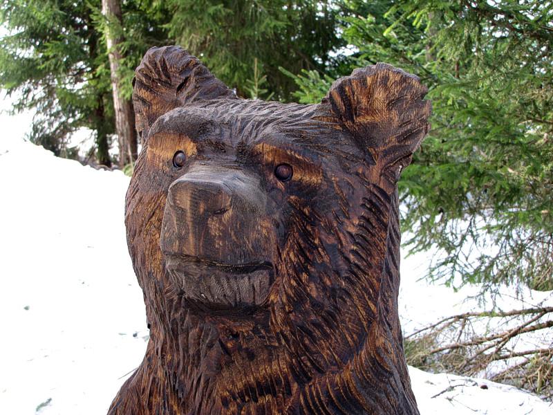 Karu / Bear 27