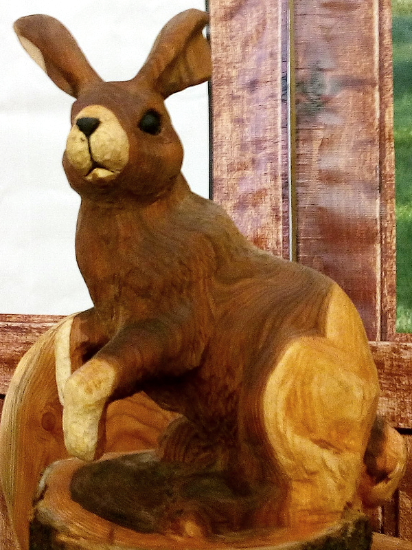Jänes / Hare 53