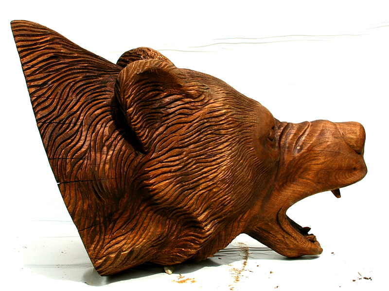 Karu pea / Bear head 56