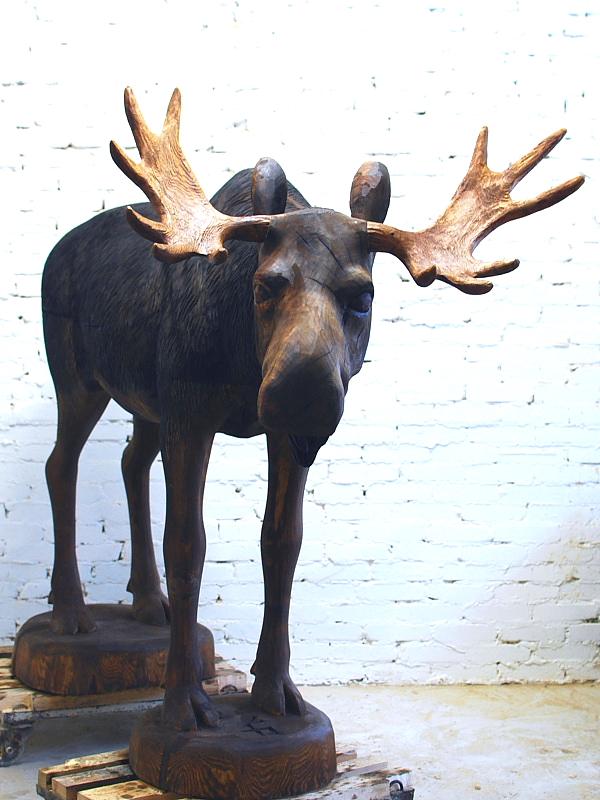 Põder / Moose 69