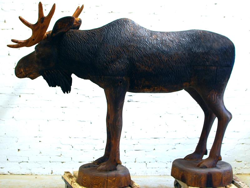 Põder / Moose 70