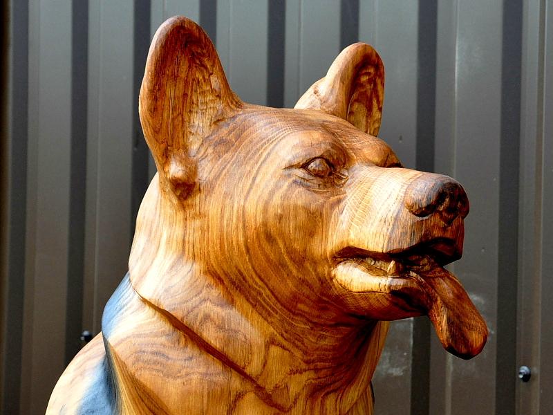 Koer / Dog 75
