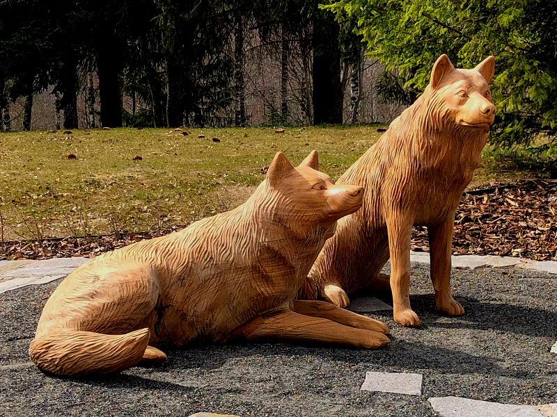 Koerad / Dogs 90