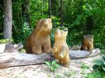 Karud / Bears 9