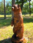 Karu / Bear 81