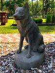 Koer / Dog 86