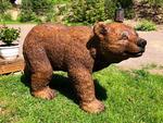 Karu / Bear 91