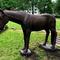 Hobune / Horse 78